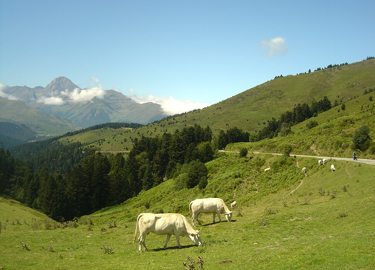 Fietsen op Col d'Aspin, Pyreneeën